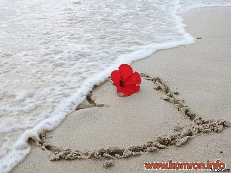 love_14-768x576