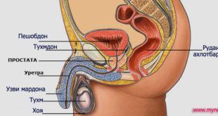 prostatita-adenoma