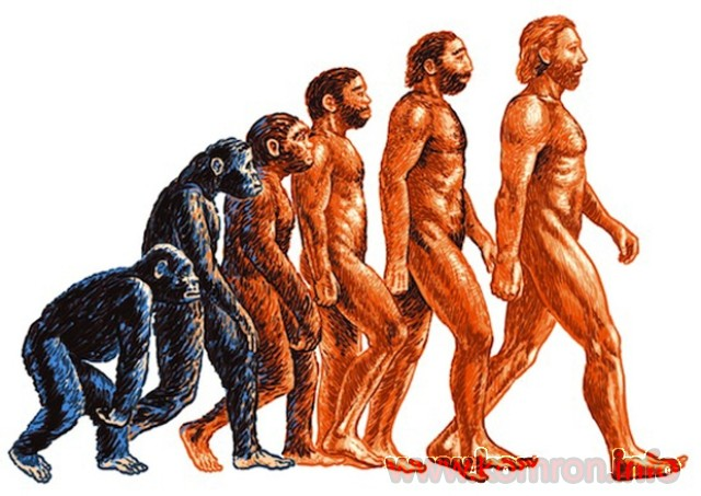 antropologiia