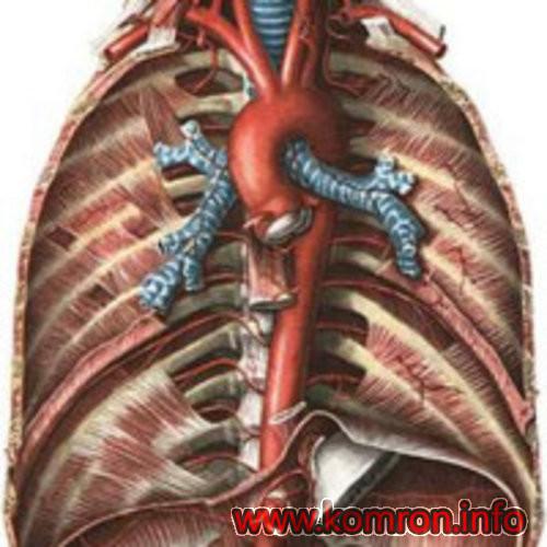 aortit-sifiliticheskij-simptomy