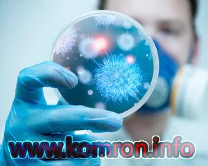 bakteriologiya