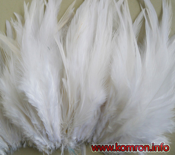 hackle_feather_white