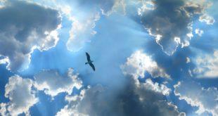nebesa-moej-dushi