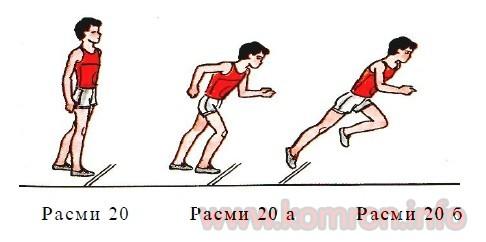 peshko-2