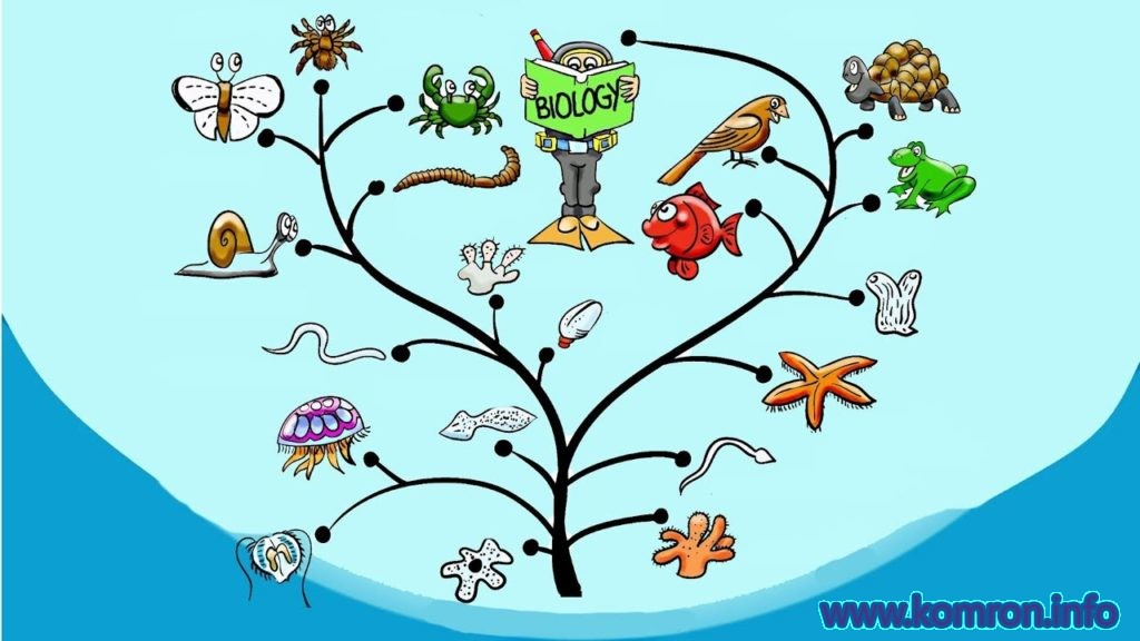 biologiya chist
