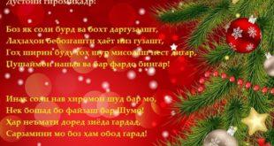 tabrikoti-solinavi