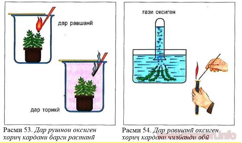 barg-oksigen