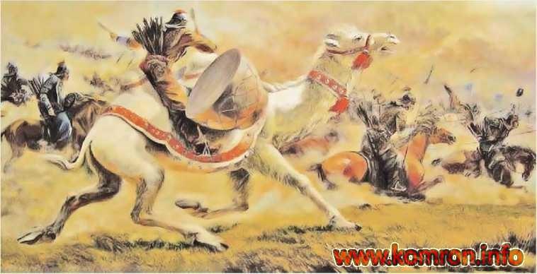 Войн на верблюде