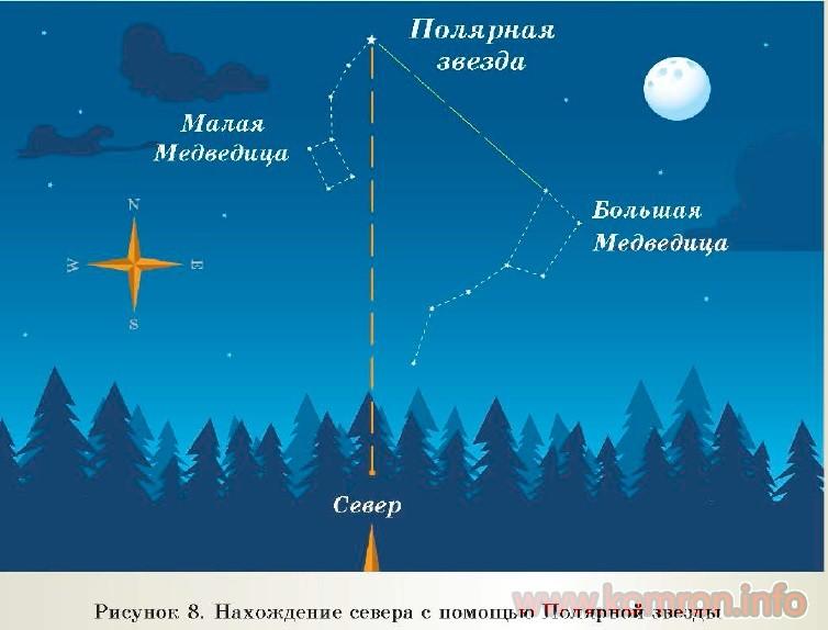 Полярные звезды