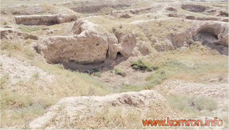 Остатки поселения Дальверзин