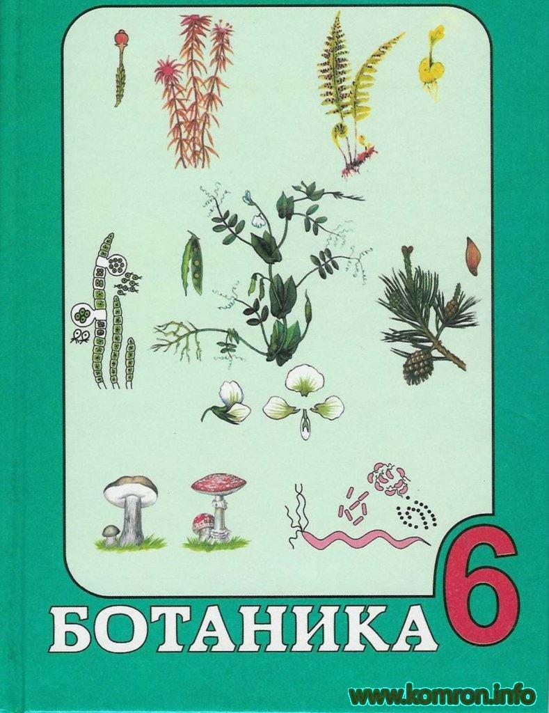 Ботаника -6 синф китоб