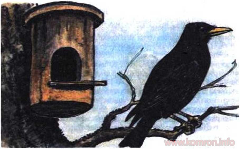 surat rasmi zog