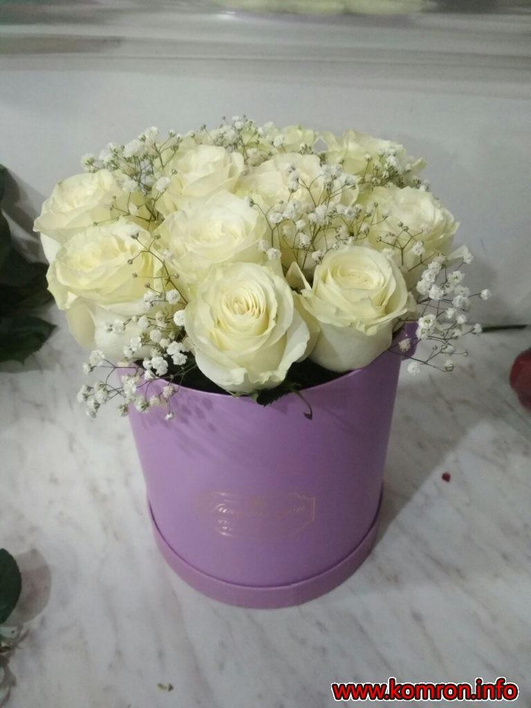 cveti-2