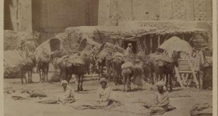 savdo-19-vek