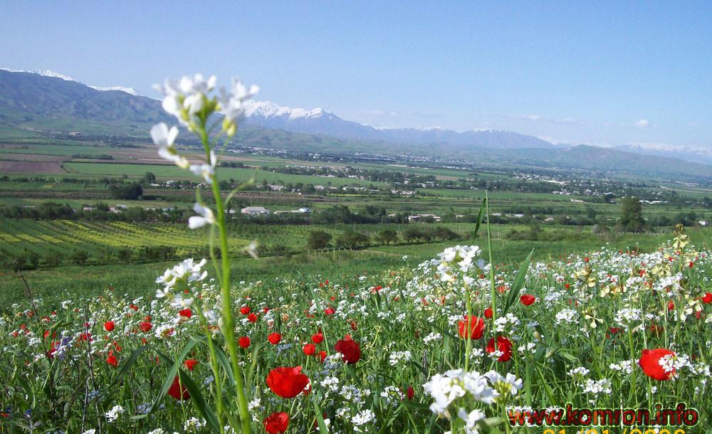 gori-priroda-tajikistan