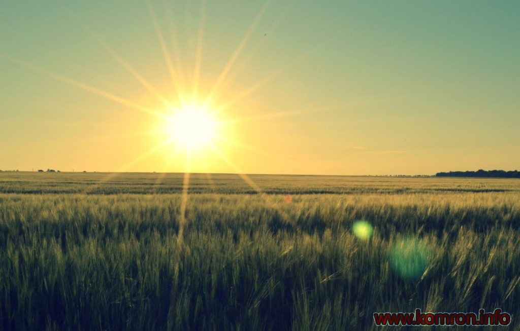 priroda-rassvet-solnce